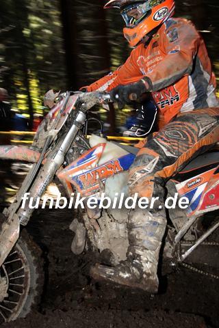 ISDE 2012 Deutschland Day 3 Enduro Test Boernichen_0450