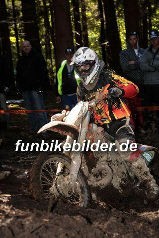 ISDE 2012 Deutschland Day 3 Enduro Test Boernichen_0454