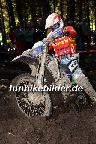 ISDE 2012 Deutschland Day 3 Enduro Test Boernichen_0456