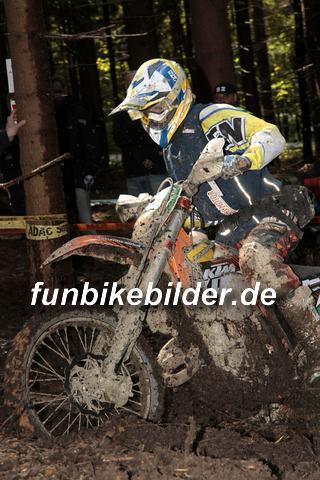 ISDE 2012 Deutschland Day 3 Enduro Test Boernichen_0458