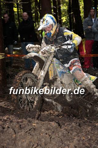 ISDE 2012 Deutschland Day 3 Enduro Test Boernichen_0459