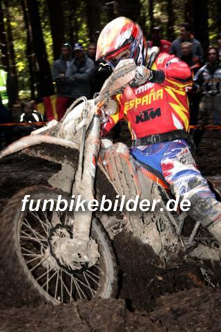 ISDE 2012 Deutschland Day 3 Enduro Test Boernichen_0461