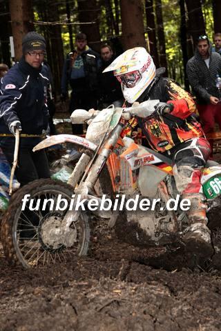 ISDE 2012 Deutschland Day 3 Enduro Test Boernichen_0467