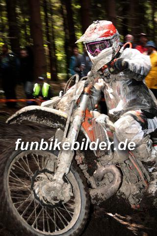 ISDE 2012 Deutschland Day 3 Enduro Test Boernichen_0468