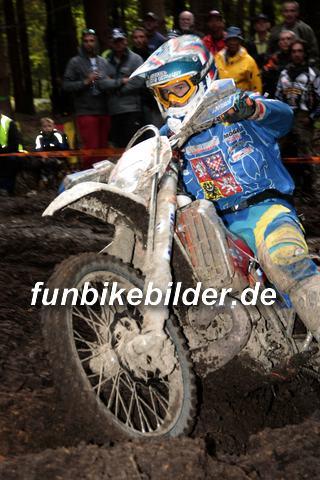 ISDE 2012 Deutschland Day 3 Enduro Test Boernichen_0470