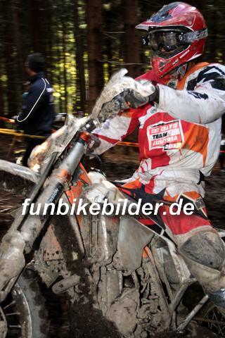 ISDE 2012 Deutschland Day 3 Enduro Test Boernichen_0481