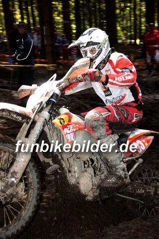 ISDE 2012 Deutschland Day 3 Enduro Test Boernichen_0485