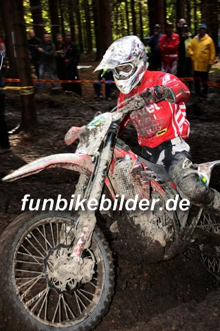ISDE 2012 Deutschland Day 3 Enduro Test Boernichen_0487