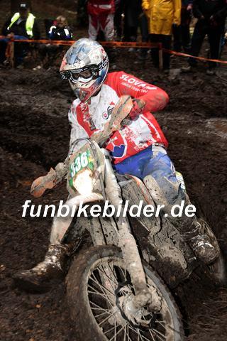 ISDE 2012 Deutschland Day 3 Enduro Test Boernichen_0492