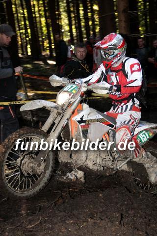 ISDE 2012 Deutschland Day 3 Enduro Test Boernichen_0508