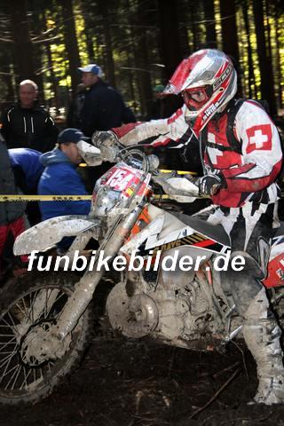 ISDE 2012 Deutschland Day 3 Enduro Test Boernichen_0509
