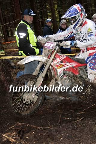 ISDE 2012 Deutschland Day 3 Enduro Test Boernichen_0526