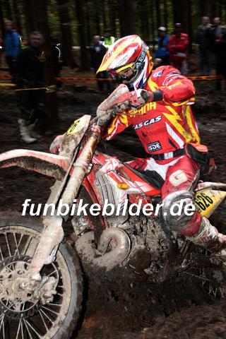 ISDE 2012 Deutschland Day 3 Enduro Test Boernichen_0529