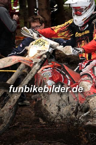ISDE 2012 Deutschland Day 3 Enduro Test Boernichen_0542