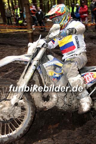 ISDE 2012 Deutschland Day 3 Enduro Test Boernichen_0557