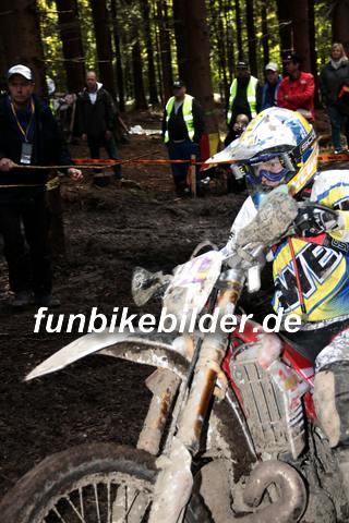 ISDE 2012 Deutschland Day 3 Enduro Test Boernichen_0565
