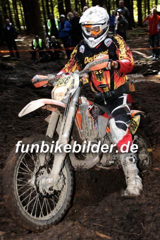 ISDE 2012 Deutschland Day 3 Enduro Test Boernichen_0597
