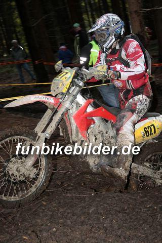 ISDE 2012 Deutschland Day 3 Enduro Test Boernichen_0611