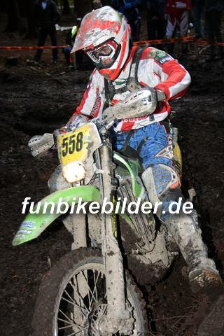 ISDE 2012 Deutschland Day 3 Enduro Test Boernichen_0612