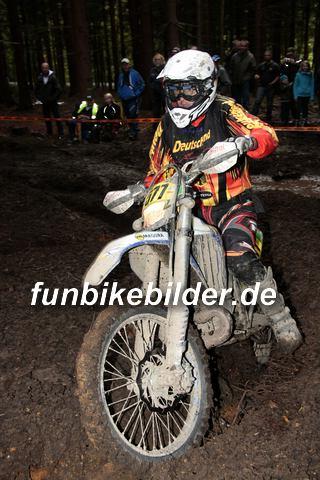 ISDE 2012 Deutschland Day 3 Enduro Test Boernichen_0637