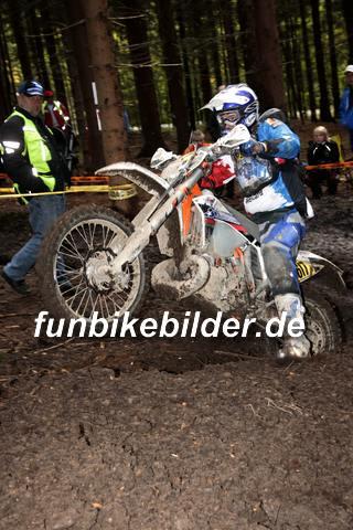 ISDE 2012 Deutschland Day 3 Enduro Test Boernichen_0653