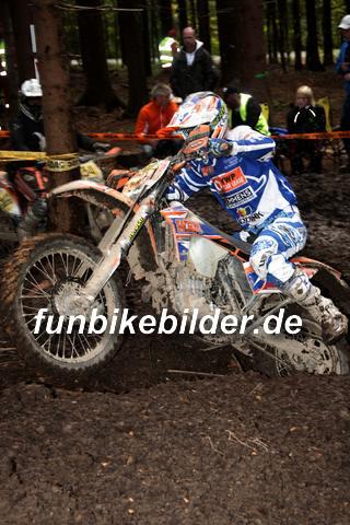 ISDE 2012 Deutschland Day 3 Enduro Test Boernichen_0659
