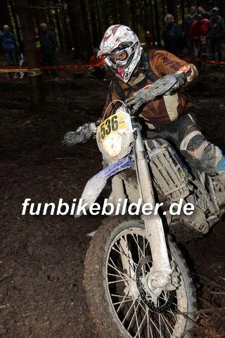 ISDE 2012 Deutschland Day 3 Enduro Test Boernichen_0667