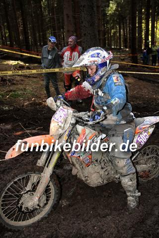 ISDE 2012 Deutschland Day 3 Enduro Test Boernichen_0674