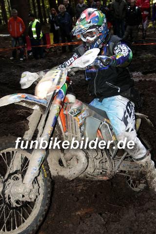 ISDE 2012 Deutschland Day 3 Enduro Test Boernichen_0679