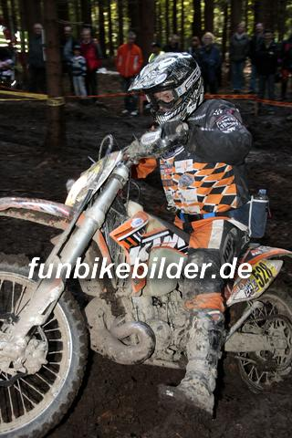 ISDE 2012 Deutschland Day 3 Enduro Test Boernichen_0684