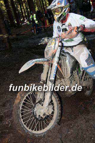 ISDE 2012 Deutschland Day 3 Enduro Test Boernichen_0687
